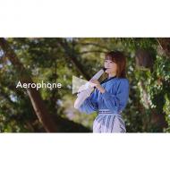 Roland_AerophoneSeriesPR